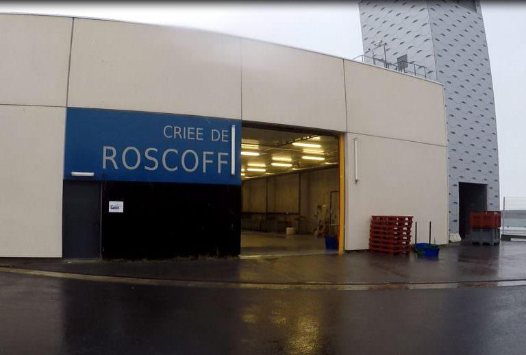 criee-roscoff