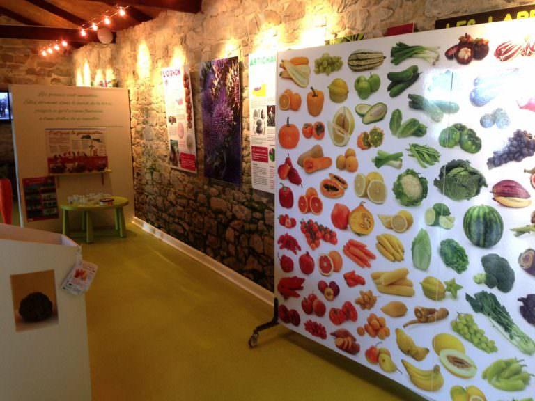 legumes-project-st-pol