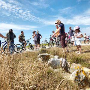 Vélo découverte Plouescat