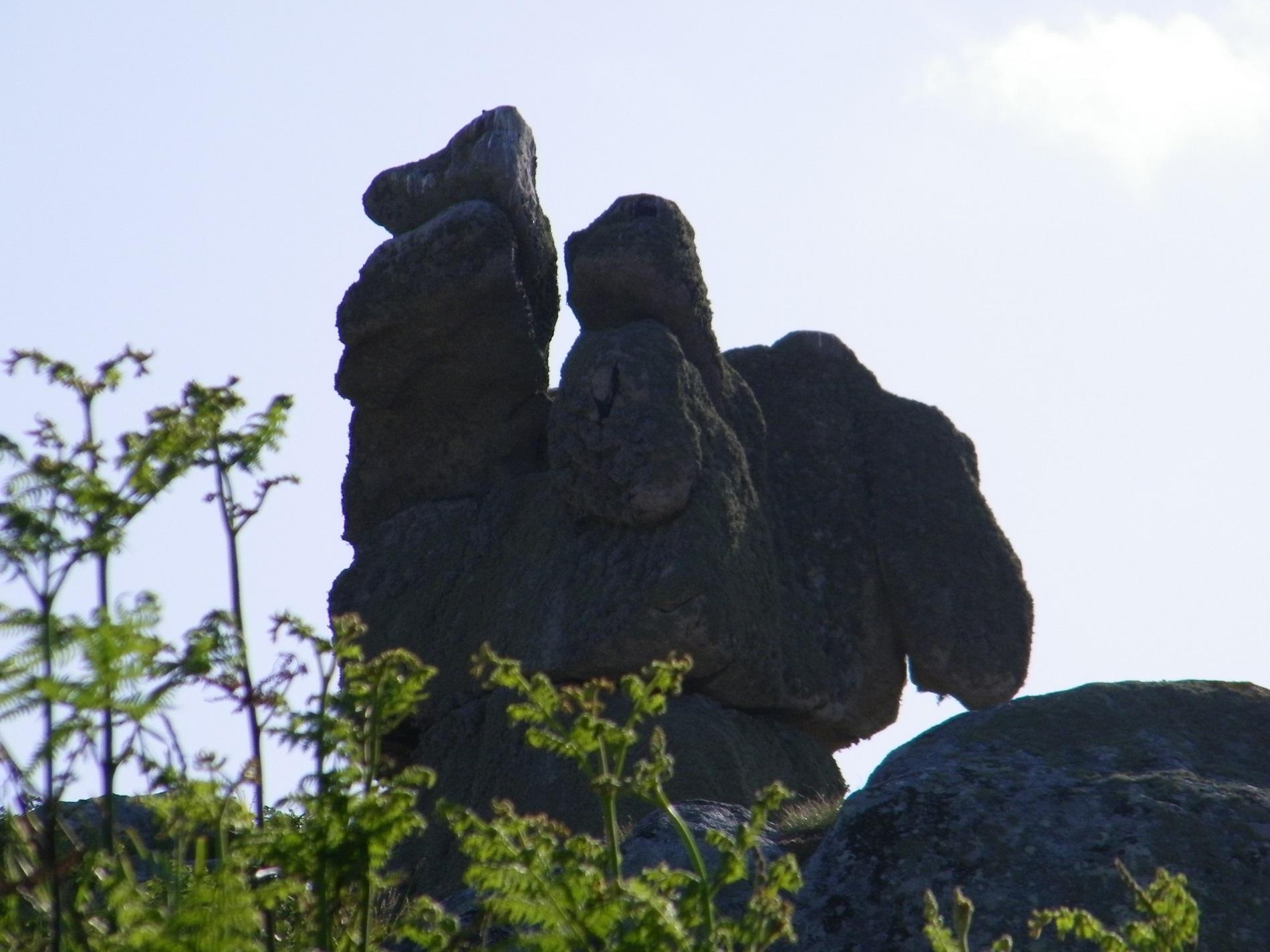 Rocher du Coq