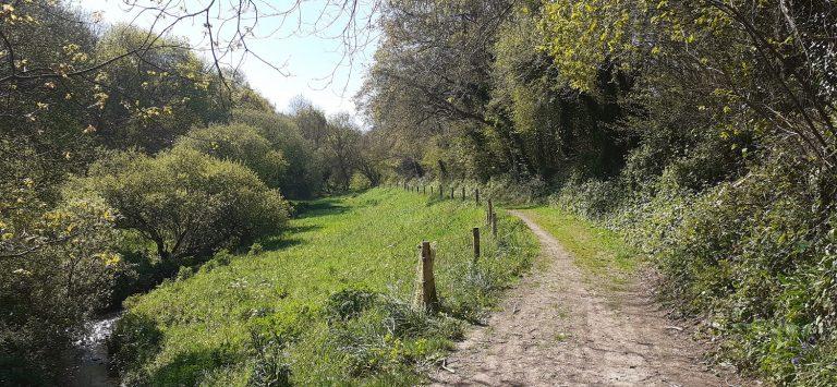 Plounevez Lochrist- vallée de pont d'arm-crédit ph P. Mellouet 22