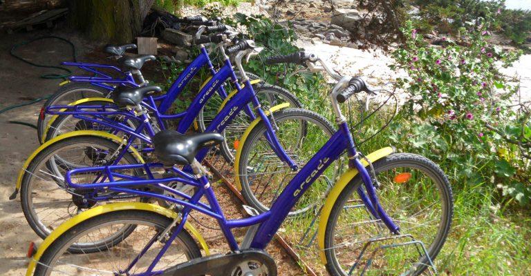 IDB Loc vélos Le Saout